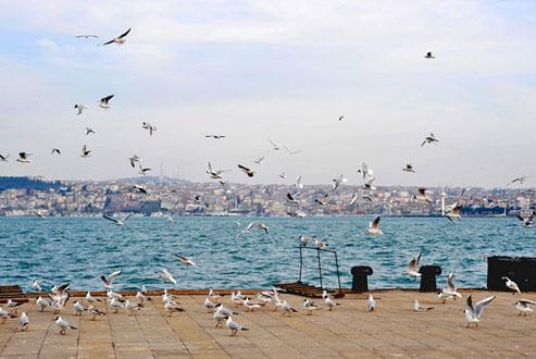 Living Istanbul- Andrea Kuenzig Photography